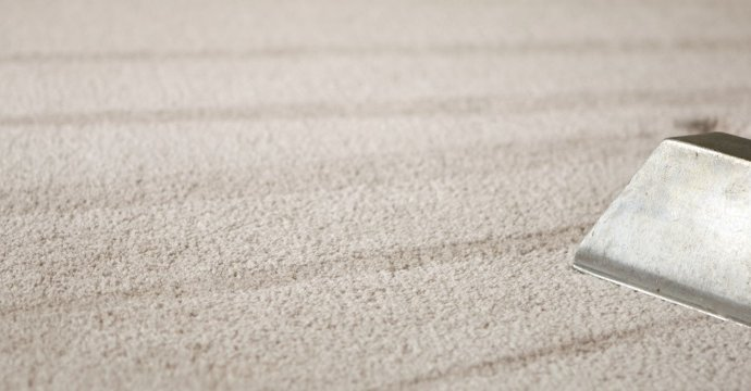 Busy Bees Carpet Cleaning - Our Porcess