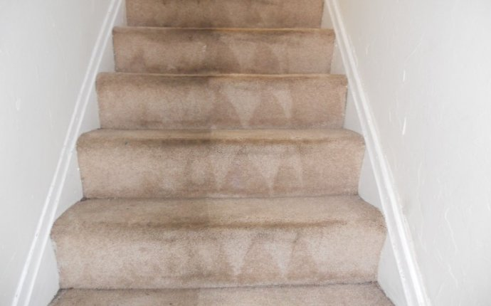 Carpet Cleaner Stairs - Carpet
