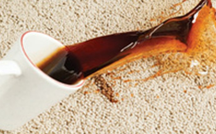 Carpet-Cleaning Tricks from the Queen of Clean - Bottom Line Inc
