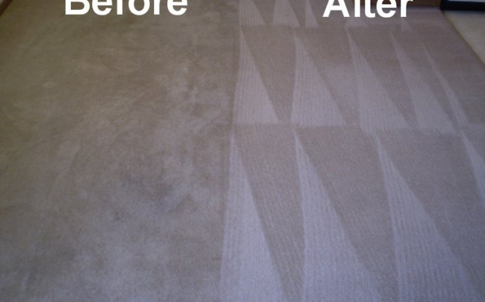 Deep Cleaning Carpet - Carpet