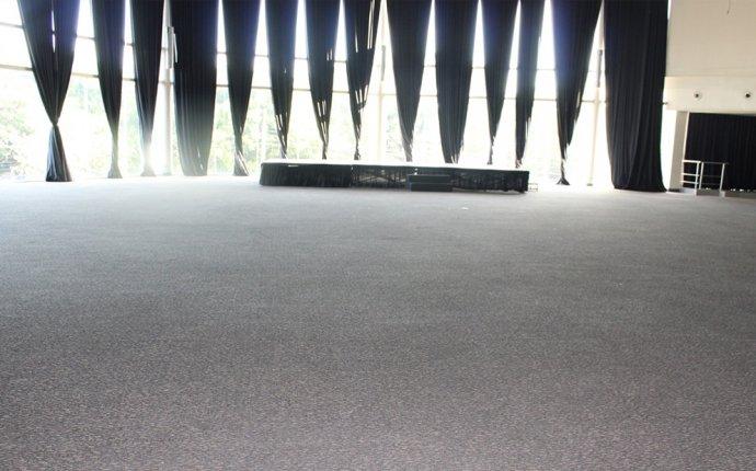 Dry Foam Carpet Cleaner - Carpet