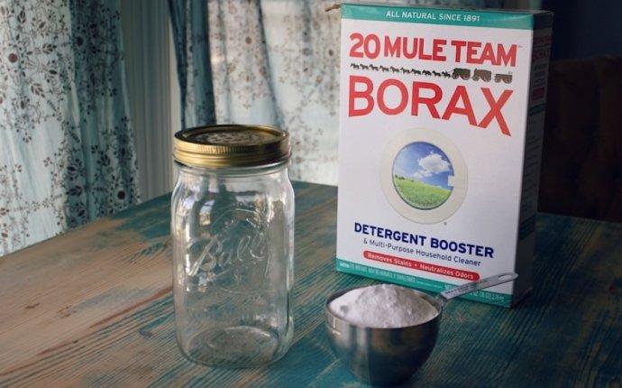 Homemade Carpet Freshener Powder with Borax
