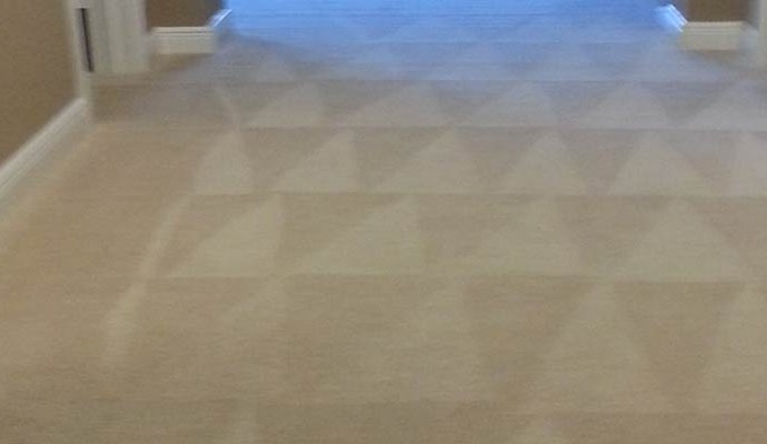 Trinity Carpet Care - Carpet, Tile, Upholstery Cleaning