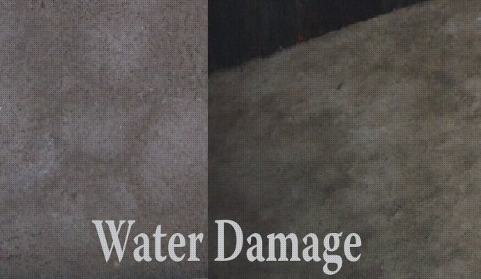 Water damaged carpet cleaning