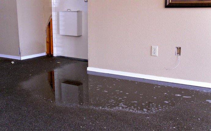 Water Damaged Carpets Bundoora Melbourne / Masters Water Damage