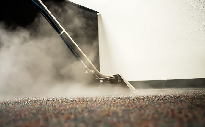 Carpet cleaning equipment reviews