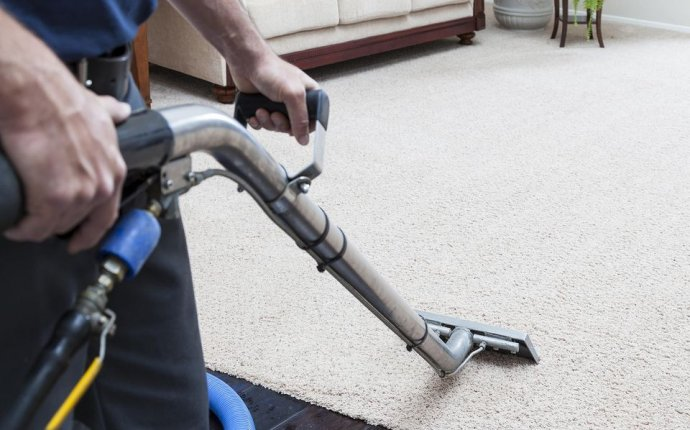 Best DIY Carpet cleaning machine