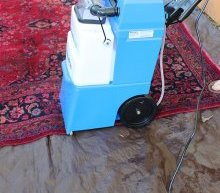 Cleaning a Vintage Rug with a Rental Carpet Cleaner