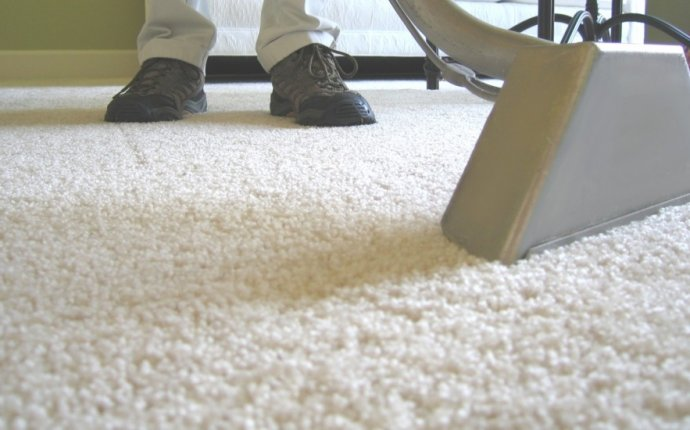 Does professional Carpet Cleaning work
