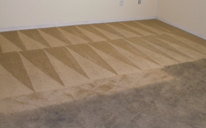 How to professionally Cleaning carpet?