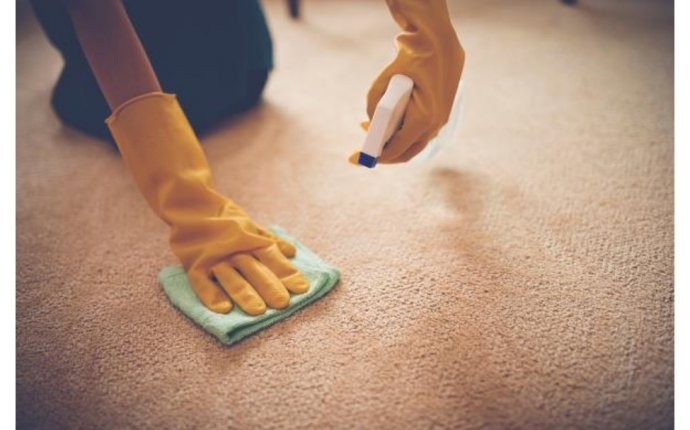 Professional Carpet Cleaning Fayetteville NC